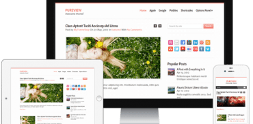 Pureview WordPress Theme