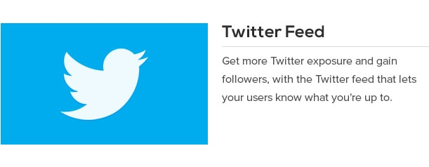 Get more Twitter exposure and gain followers, with the Twitter feed that lets your users know what you're up to.