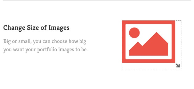 Big or small, you can choose how big you want your portfolio images to be.