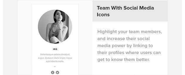 Team with Social Media Icons. Highlight your team members, and increase their social media power by linking to their profiles where users can get to know them better.
