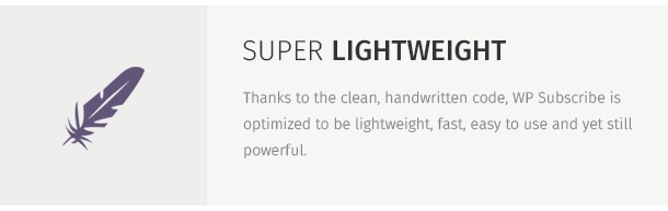 Thanks to the clean, handwritten code, WP Subscribe is optimized to be lightweight, fast, easy to use and yet still powerful.