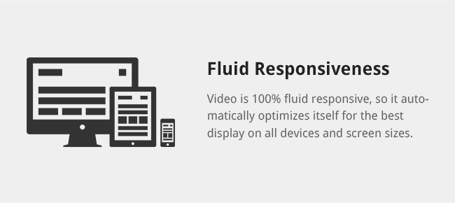 Video is 100% fluid responsive, so it automatically optimizes itself for the best display on all devices and screen sizes.