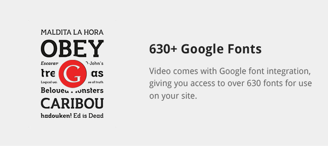 Video comes with Google font integration, giving you access to over 630 fonts for use on your site.