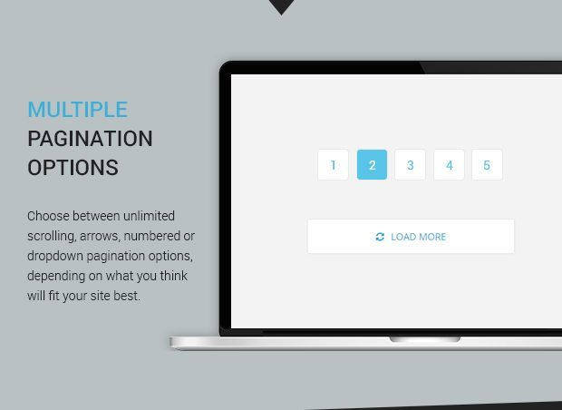 Multiple Pagination Options