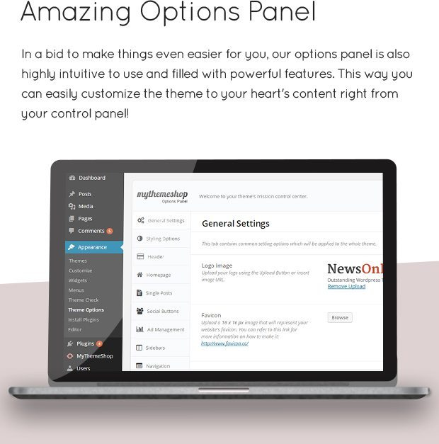 Amazing Options Panel