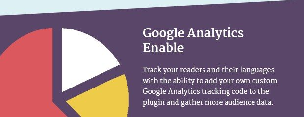 Google Analytics Enable