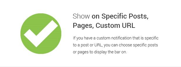 Show on Specific Posts Pages Custom URL