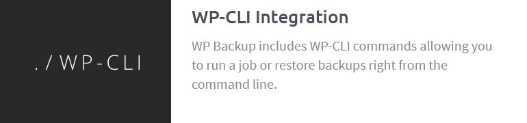 WP CLI Integration
