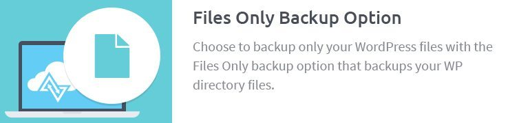 Files Only Backup Option