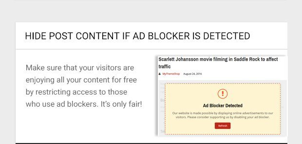Make sure that your visitors are enjoying all your content for free by restricting access to those who use ad blockers. It's only fair!