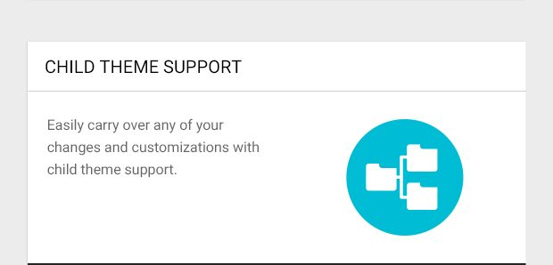 Easily carry over any of your changes and customizations with child theme support.
