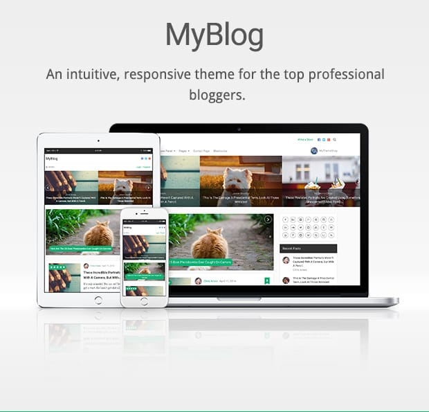 An intuitive, responsive theme for the top professional bloggers. Beautiful and Innovate Homepage Layout