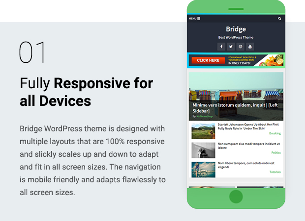 Fully Responsive for all Devices
