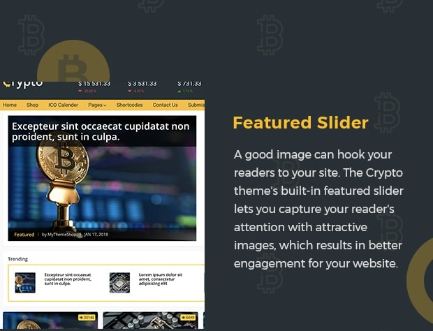 Featured Slider